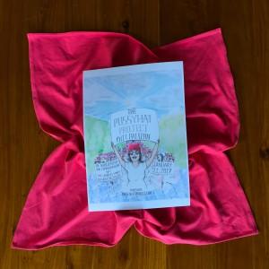 Deckblatt der Anleitung zur Herstellung eines Pussyhat